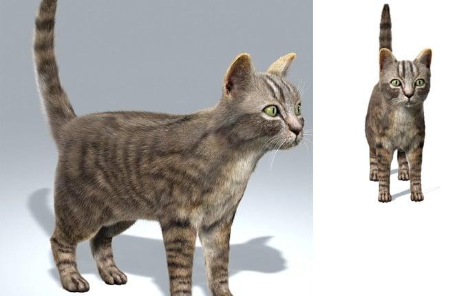 3D-Modelling dreidimensionale Objekte Menschen Tiere Haustiere von Fotos 3D-Druck