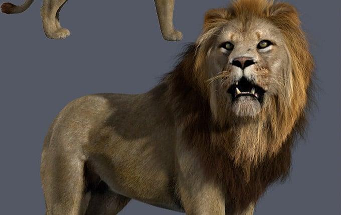 3D-Modelling dreidimensionale Objekte Menschen Tiere Haustiere von Fotos 3D-Druck Trier